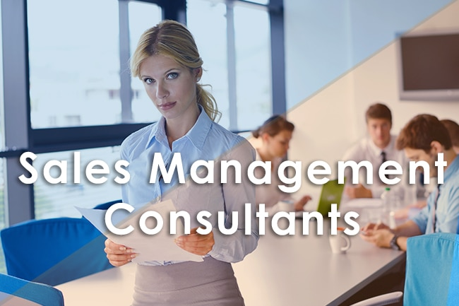 Sales Management Consultants – Why You Should Invest In Them